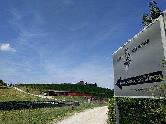 Savignano sul Panaro, Italy: Ingresso ai nostri Poderi Fiorini e accesso alla nostra Torre dei Nanni.