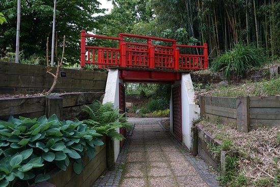 Jardin botanique photo de jardin botanique bayonne for Entretien jardin bayonne