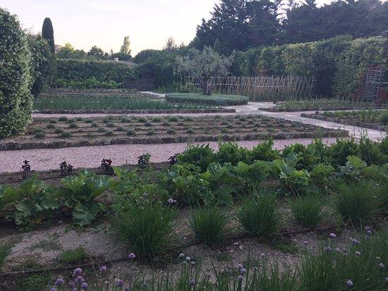 jardin picture of baumaniere les baux de provence les. Black Bedroom Furniture Sets. Home Design Ideas