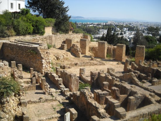 Carthage Museum : Remains of Carthage with the city in the background