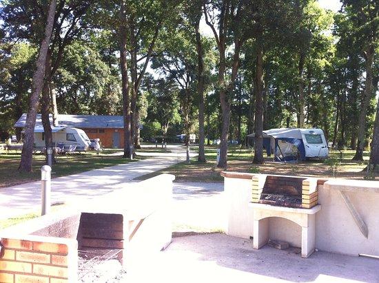 Espace Barbecue espace barbecue - camping port mulon nort-sur-erdre pays de loire