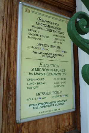 Музей микроминиатюр Николая Сядристого: Eingang
