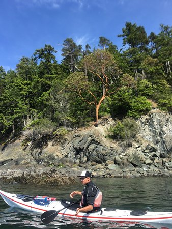 Roche Harbor, WA: Glorious nature at it's best! Do  not hesitate to spend a day with AKT!!