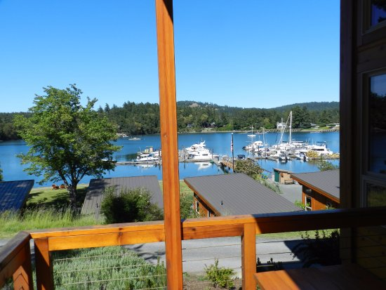 Snug Harbor Resort & Marina: View from deck of the cabin