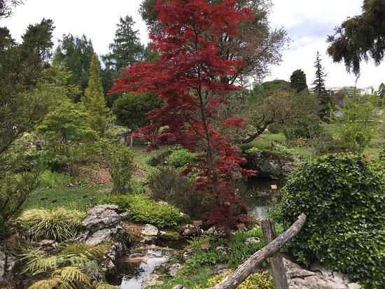 Jardin botanique villa le chene picture of jardin for Camping le jardin botanique limeray