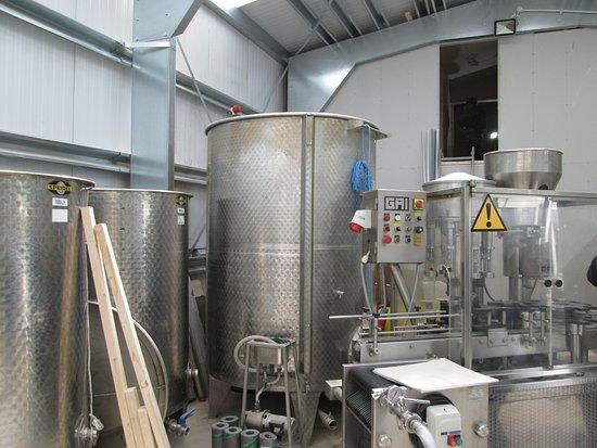 Holmfirth Vineyard: Inside the Winery