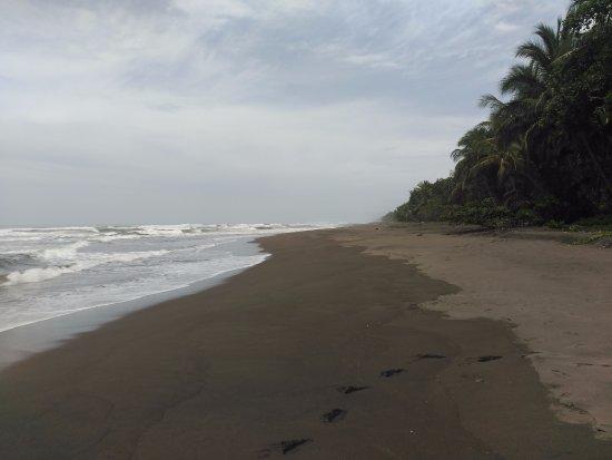 Mawamba Lodge: Playa en lado Atlántico - no bañarse: hay fuertes corrientes.