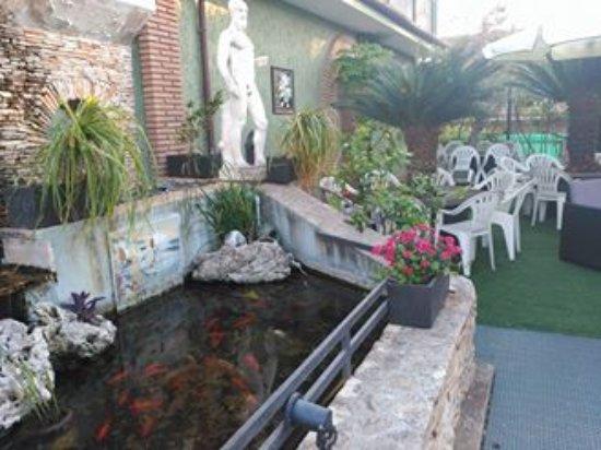 villa patrizia estanque de peces estaba al lado de nuestra habitacin ah tombamos