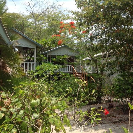 Miller's Landing Resort: Chalets