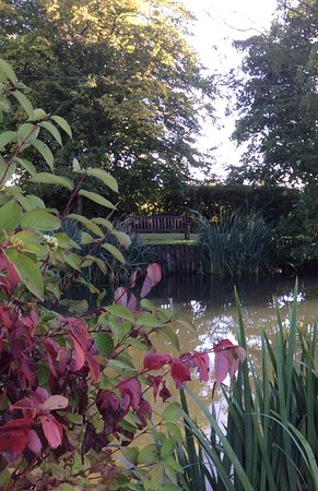 Framlingham, UK: A view of the pond from the house