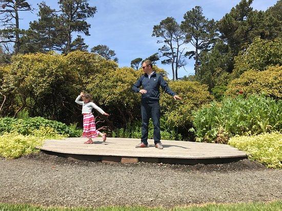 Mendocino Coast Botanical Gardens: photo4.jpg