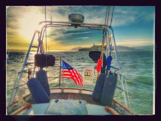 Sail Freedom