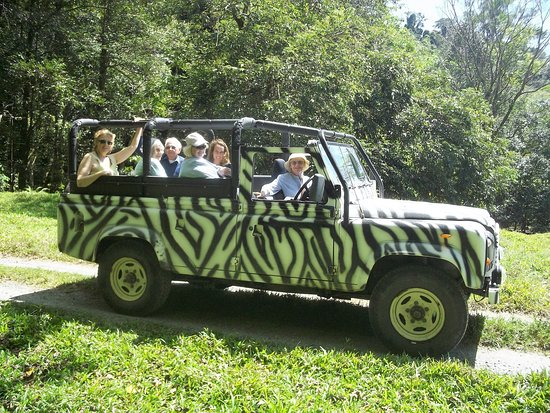 Image result for discovery daintree tours