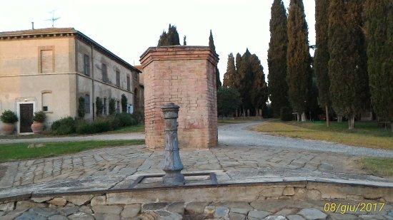 Istia d'Ombrone, Italien: P_20170608_204335_1_p_large.jpg