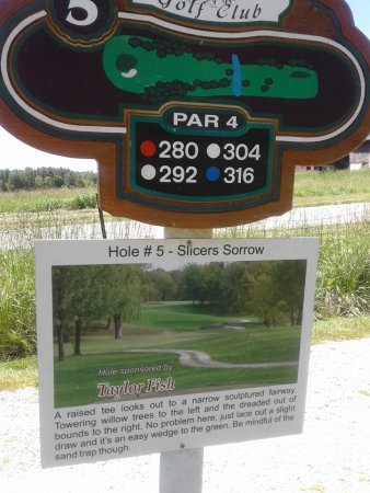 beautiful course , humourous hole descriptions on the tee . bring your water sox !  9 hole course but you could play it