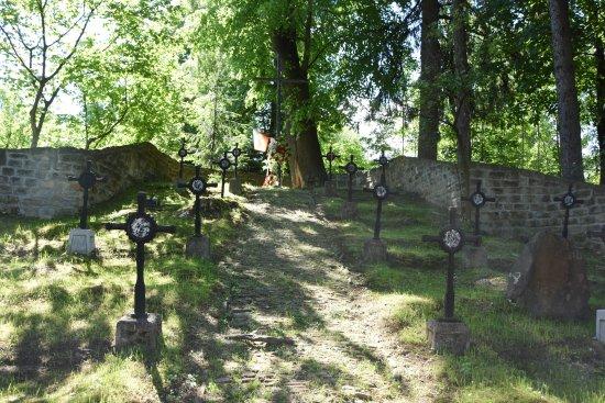 Cmentarz Wojny Światowej nr 75