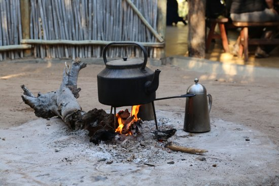 Timbavati Private Nature Reserve, Güney Afrika: Coffee is on