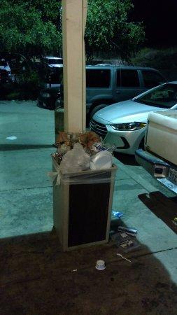 Americas Best Value Inn Yosemite-Oakhurst : Trash piled up for at least two days