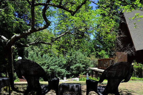 Redwoods River Resort & Campground ภาพถ่าย