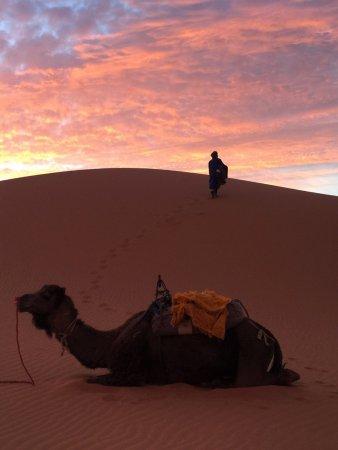Your Morocco Tour LLC : sunrise at sahara