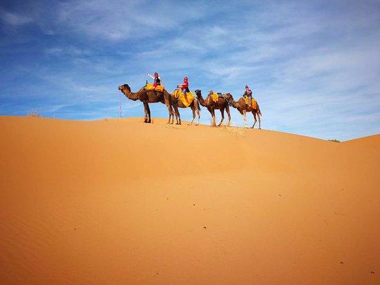 Your Morocco Tour LLC : on top of san dune