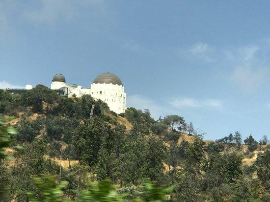 A Day in LA Tours: photo6.jpg