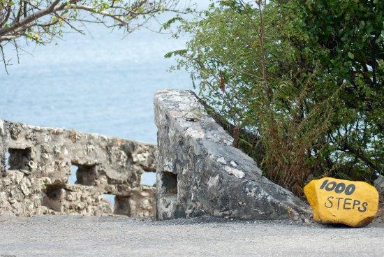 Foto Blachi Koko Apartments Bonaire
