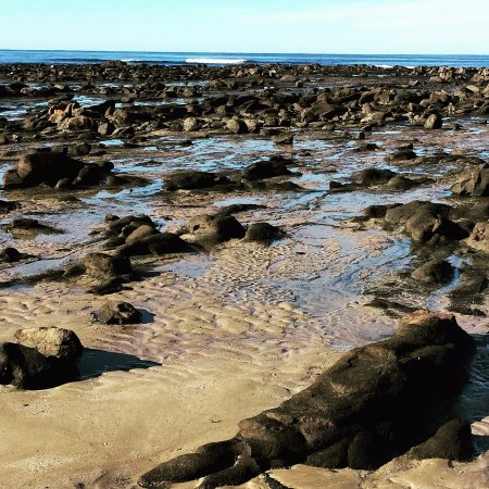 Tuross Head, Australia: Broulee Island southern rock platform at low tide