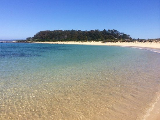 Tuross Head, Australien: Broulee Island, 1 hour easy walk around and explore