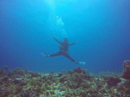 Luum ha Divers: yeah xox
