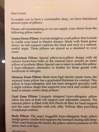ذا أوبيروي جوراجون: Pillow Options