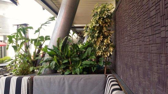 Plympton, Australia: nice booths