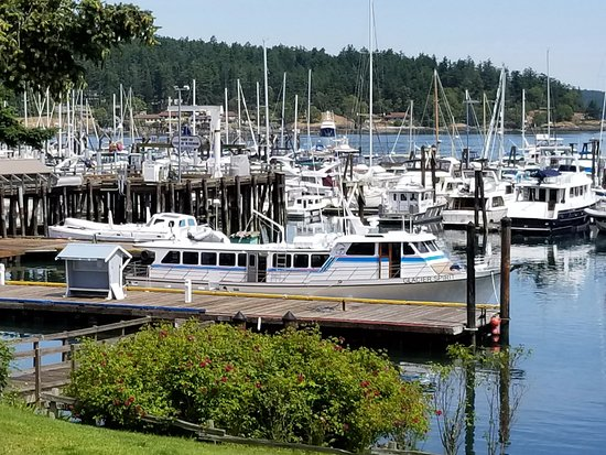 Port Townsend, WA: Dockside in Friday Harbor...