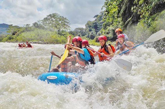 Whitewater Rafting Class III on the...