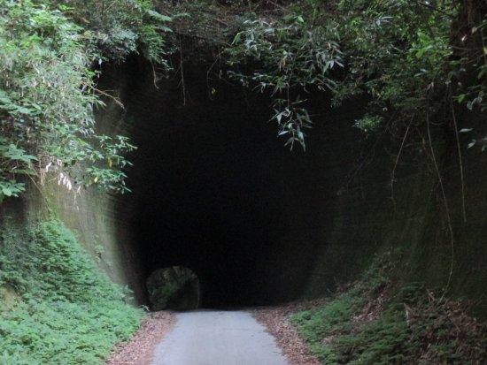Kakinokidai Tunnel
