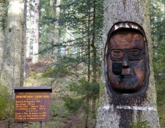 Les Fourgs, Франция: Sculpture représentant Edgar Faure sur le tronc du sapin président