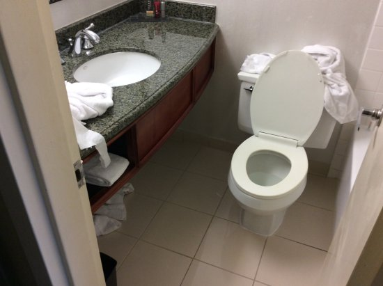 Miami Airport Marriott: Toilet in front of sink
