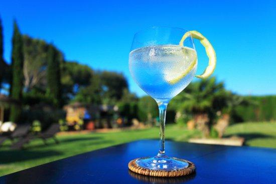Regencos, Spanien: Gin tonic