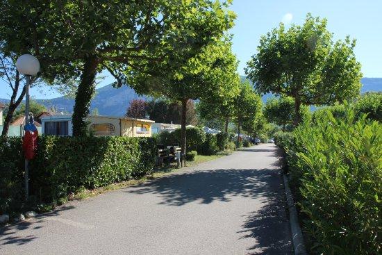 camping la vallee bleue montalieu vercieu frankrijk foto 39 s en reviews tripadvisor. Black Bedroom Furniture Sets. Home Design Ideas