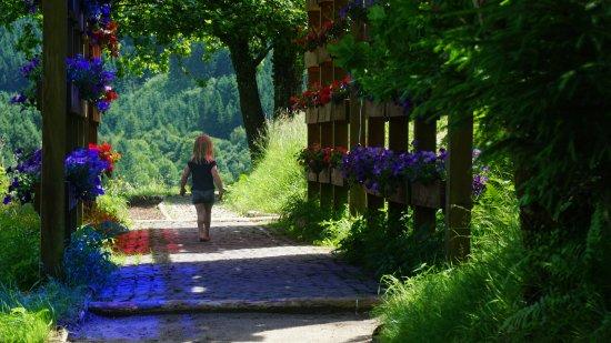 Гутах-им-Шварцвальд, Германия: DSC07334_large.jpg