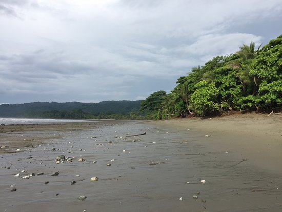 Boca Sombrero: photo1.jpg