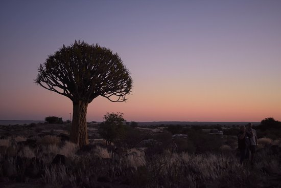 Keetmanshoop, Namibië: sunset in the quivertree forest