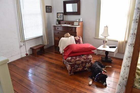 Elizabeth City Bed and Breakfast: Very dog friendly!