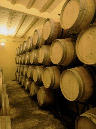 Villemoustaussou, France: Barrels in the aging room