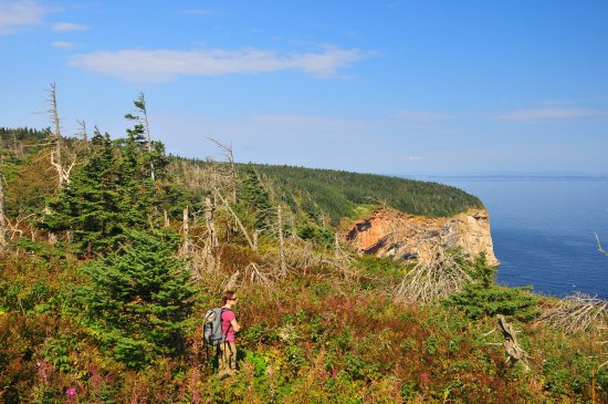 Perce, Kanada: Sentier Les Mousses