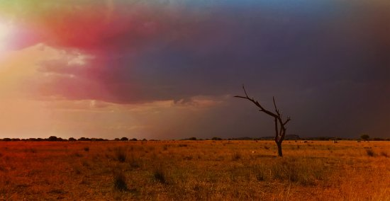 Modimolle (Nylstroom), South Africa: Sunset