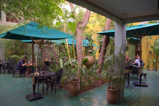 Courtyard garden photo de le jardin r gion de marrakech for Le jardin 32 route sidi abdelaziz marrakech 40000