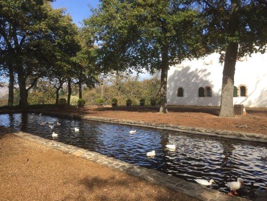Constantia, Sydafrika: photo3.jpg