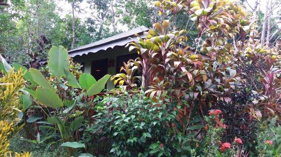 Ojochal, Costa Rica: unsere cabaña