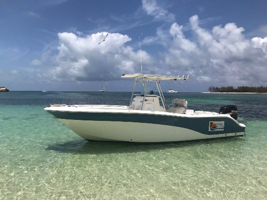 Treasure Cay, Great Abaco Island: Sea Fox on the water!